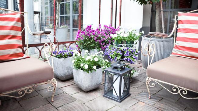 Terrassengestaltung mit Pflanzen