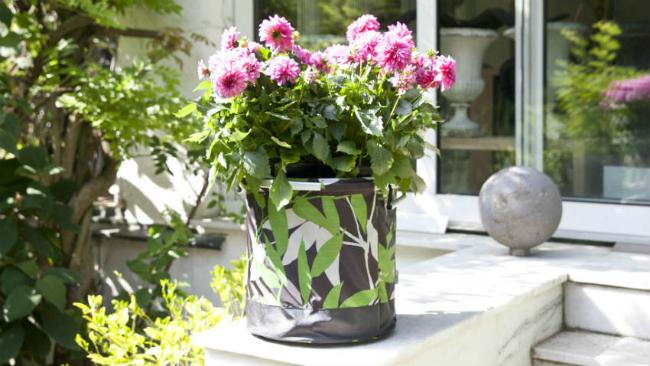 Vorgartengestaltung mit Blumen