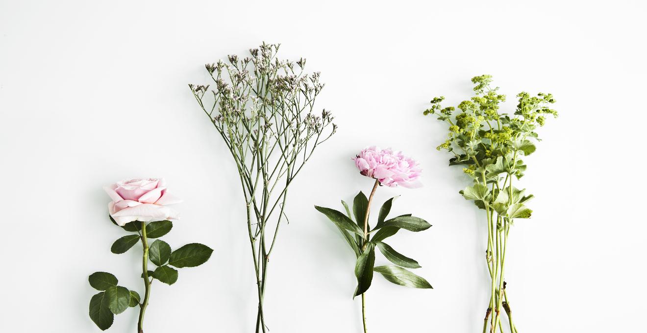 Flores Secas Un Aire Romantico Para Tu Casa Westwing - Decorar-con-flores-secas