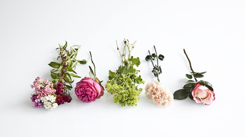 Flores Para Bodas El Encanto Del Adorno Westwing