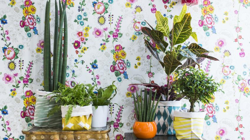Papel pintado de flores primavera en tu casa westwing - Papel pintado decoracion ...