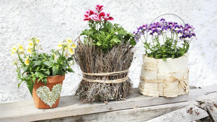 Maceteros originales todo para tus plantas westwing for Fotos de plantas en macetas