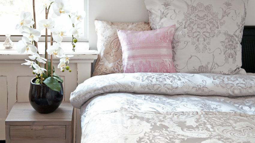 Plantas para dormitorio m s que decoraci n westwing - Plantas para dormitorio ...