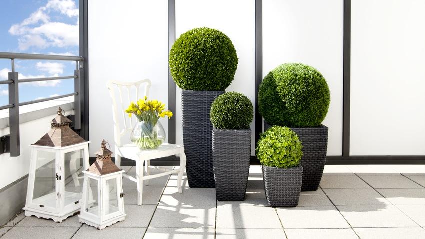 Macetas cuadradas estilo y dise o para tu casa westwing for Decoracion de macetas para plantas