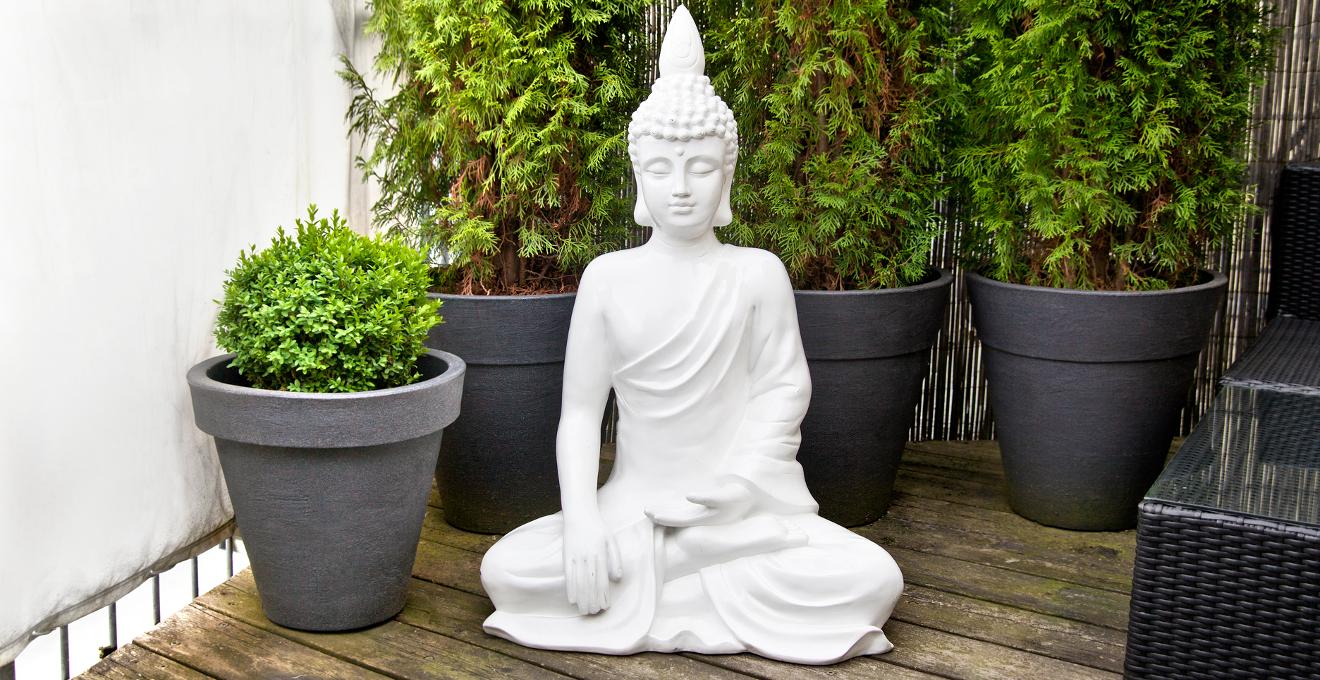 Plante en pot pour l 39 int rieur et l 39 ext rieur westwing for Grande plante exterieur en pot