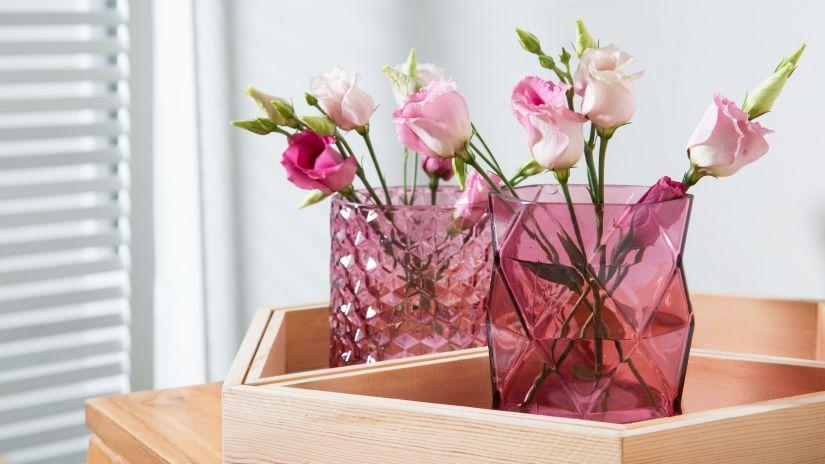 Vases roses en verre transparent