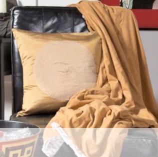 Coussin doré sur un canapé
