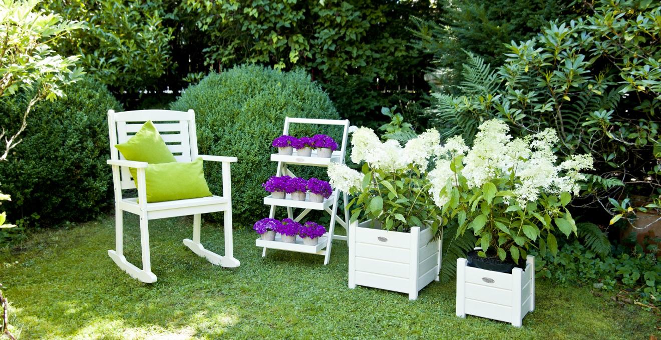 Bucaneve per un giardino elegante e raffinato sub - Grossi fiori da giardino ...