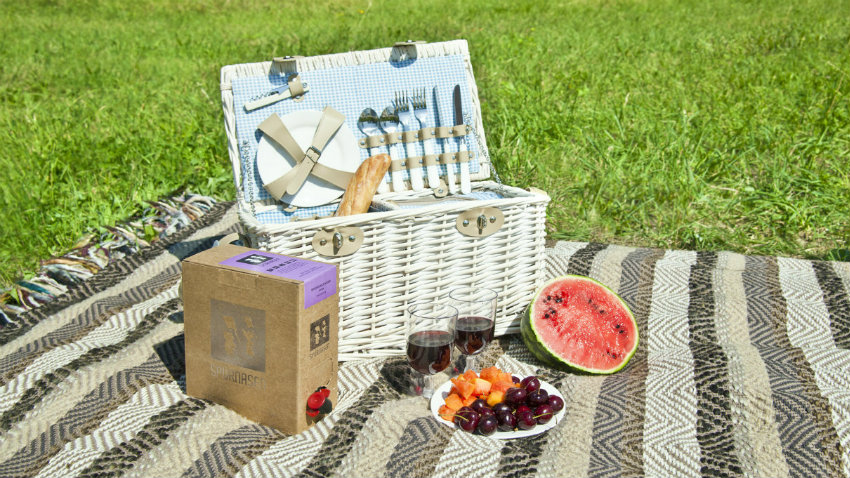 Coperta da picnic