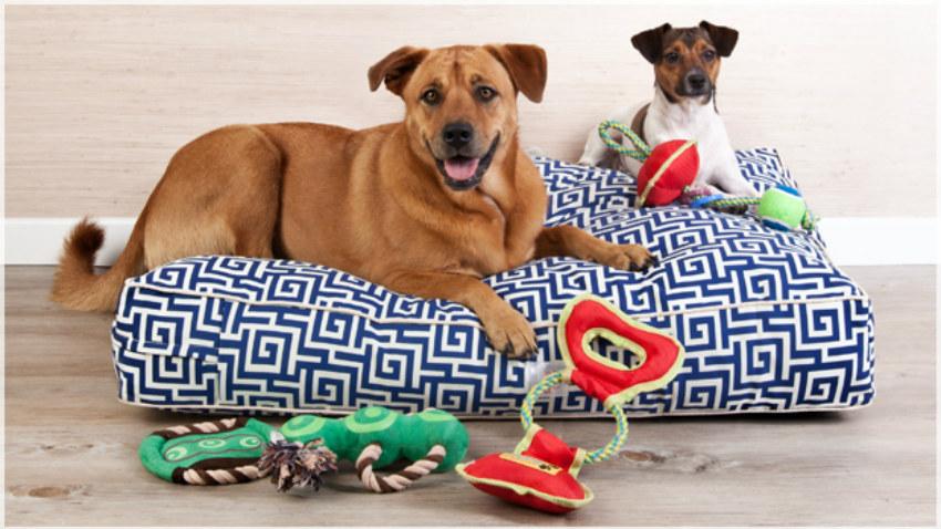 Lettini per cani