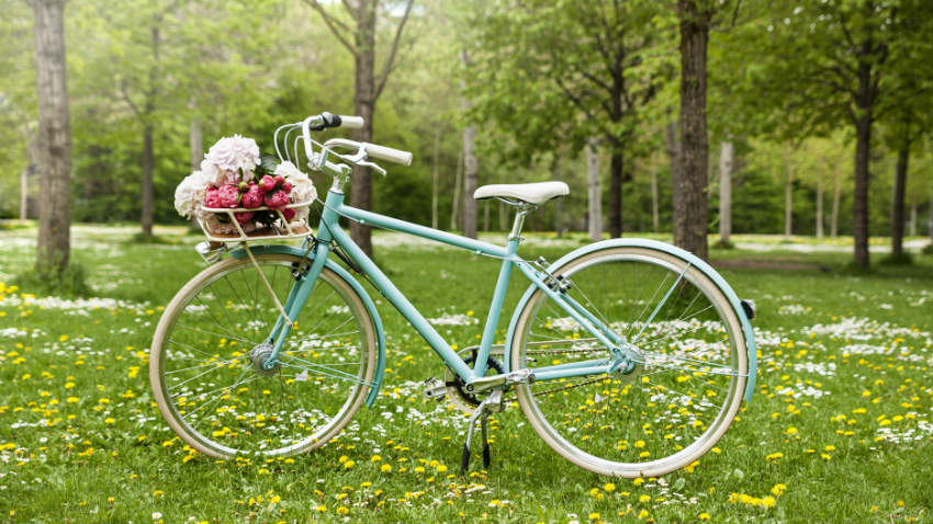Houten fietskrat