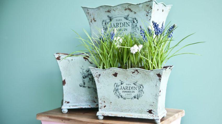 Doniczki Do Kwiatów Wybierz Idealne Westwing
