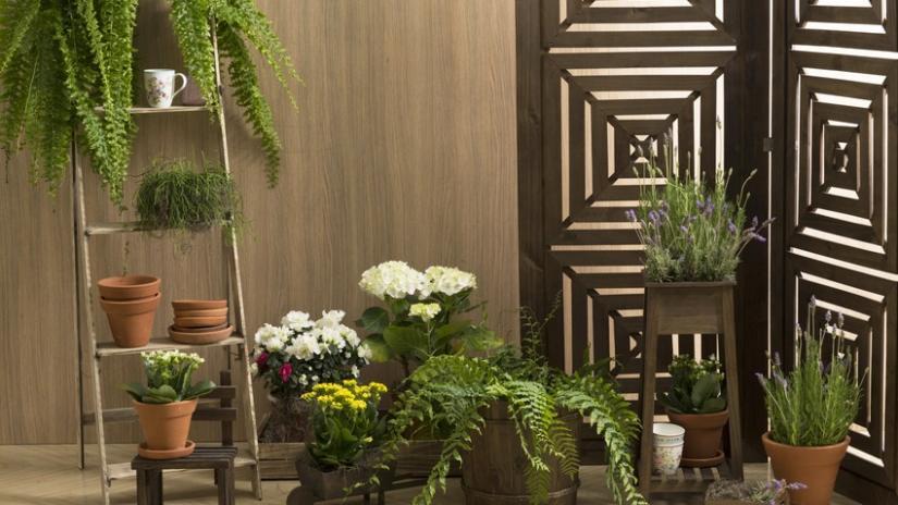 stojak na kwiaty z drabiny
