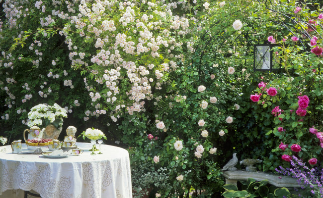 Wypoczynek w ogrodzie pod pergolą