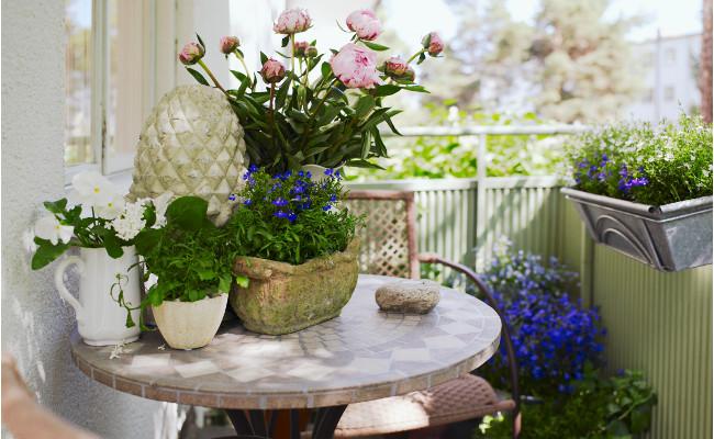Roślinne dekoracje na balkon