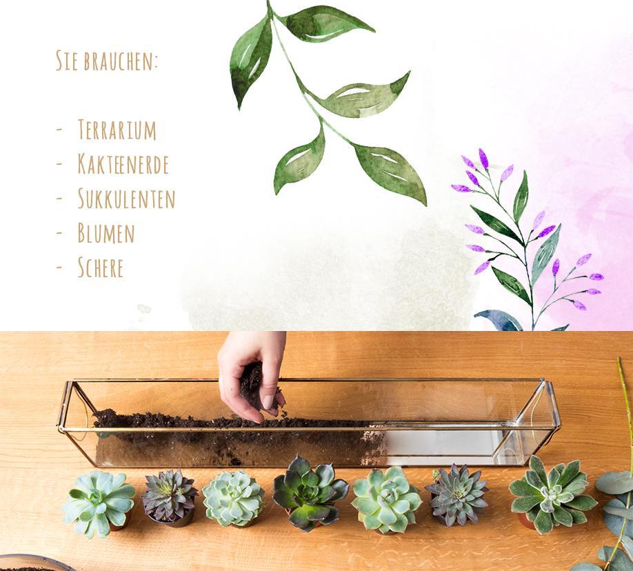 Westwing-DIY-Terrarium-Elemente-Erde