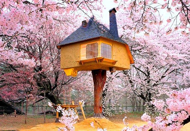 casa sull'albero giapponese