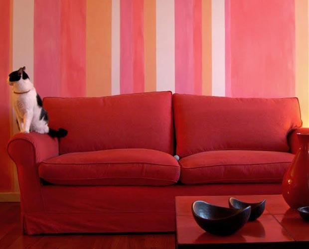 divano con gatto