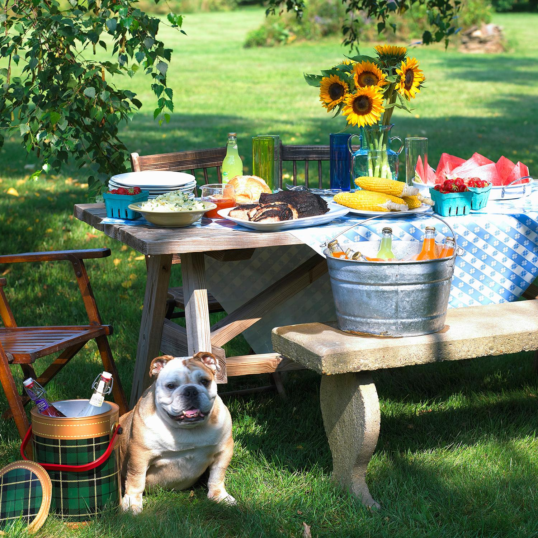Barbecue perfetto, Barbecue, Mise en place, Estate, Outdoor, Consigli, Giardino