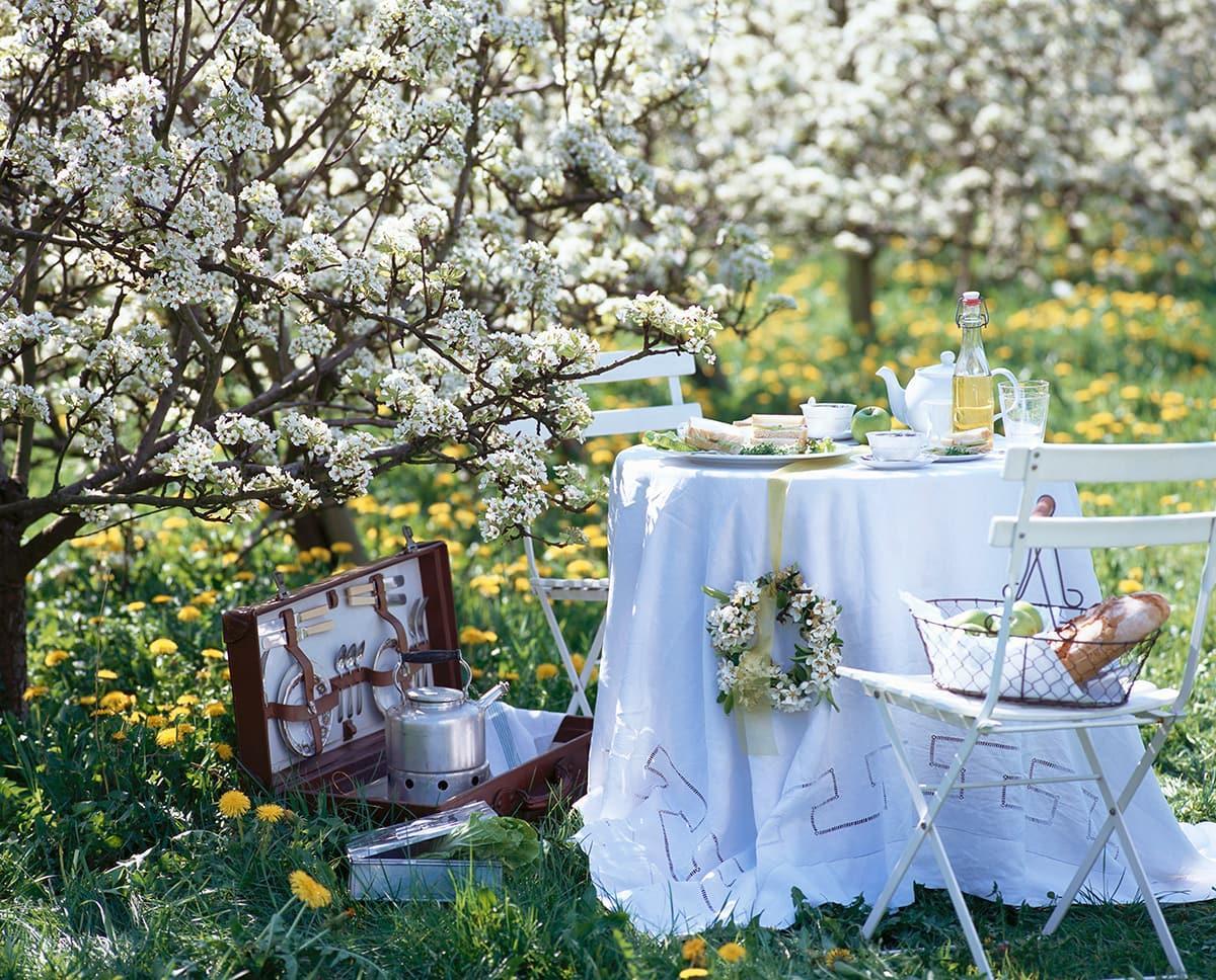 Dalani-organizzare-un-picnic-6
