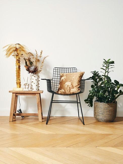 Natur-Deko mit verschiedenen Pflanzen im Wohnraum.