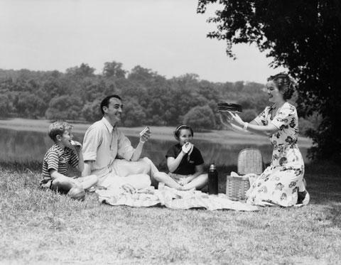 Picknick mit Westwing