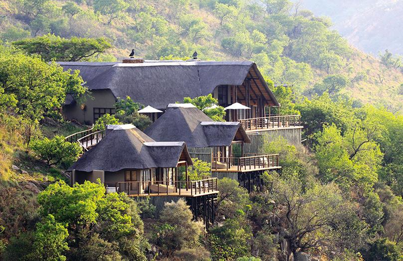 Esiweni Luxury Safari Lodge : un panorama d'exception