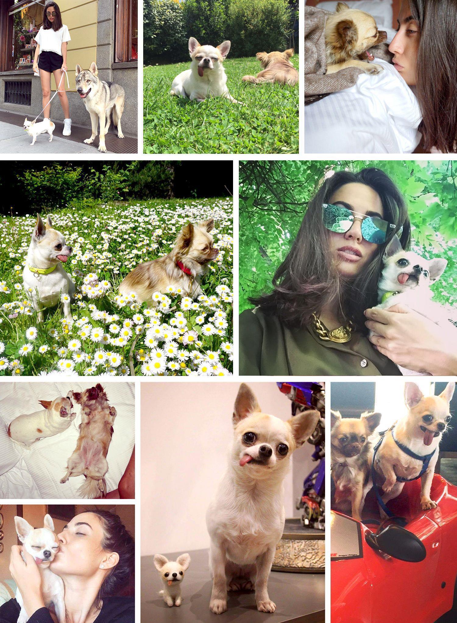 Dalani, Giulia Valentina, Casa, Milano, Parigi, Passione, Spazio, Tv