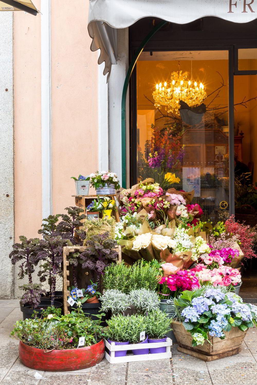 Dalani, Frida's, Fiori, Spazio, Casa, Outdoor, Colori, Trend, Stile