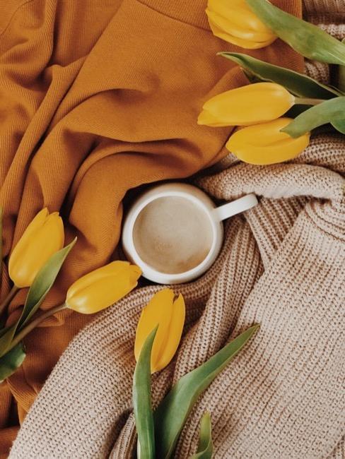 Tasse blanche entourée de plaids orange et beige et de tulipes jaunes