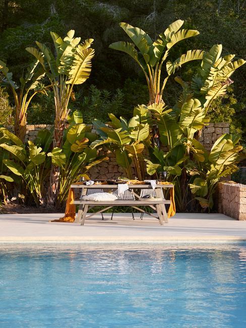Piscine et une table sur une terrasse devant des palmiers