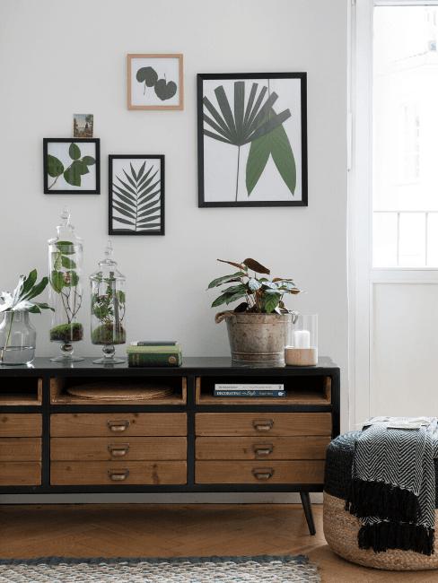 Mobile e quadri con piante