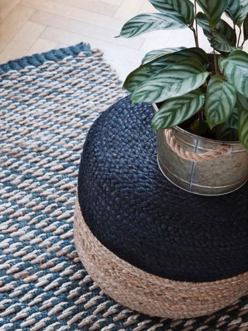 Pouf et tapis bleu avec plante en cache-pot