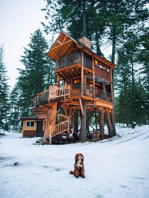 Großes Baumhaus im Wald mit Schnee und Hund