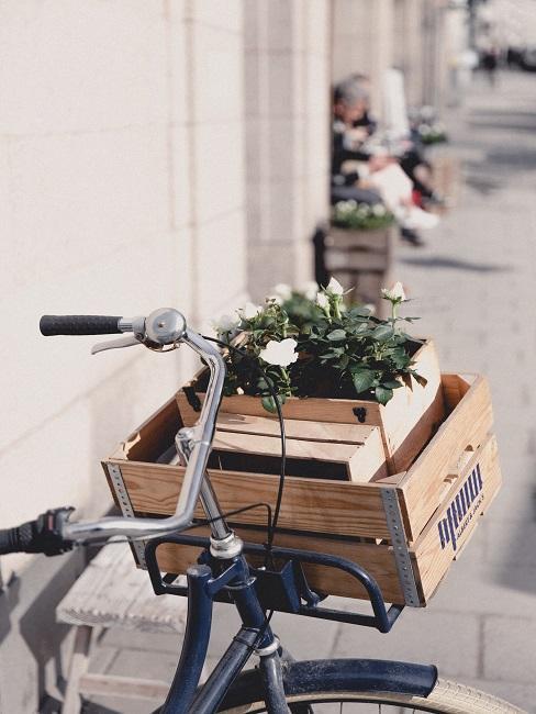 Décoration de bicyclette sous forme de fleurs dans une boîte à vin, fixée à l'avant de la bicyclette