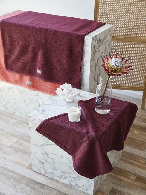 Einzelne Protea Pflanze als Tischdeko