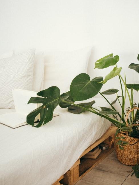 Lit à linge blanc sur palette et plante verte en panier
