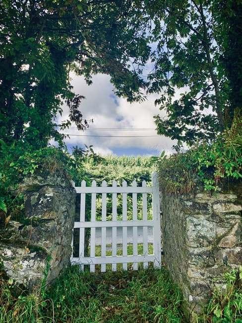 Biała furtka wejściowa do ogrodu pomiędzy betonowym ogrodzeniem