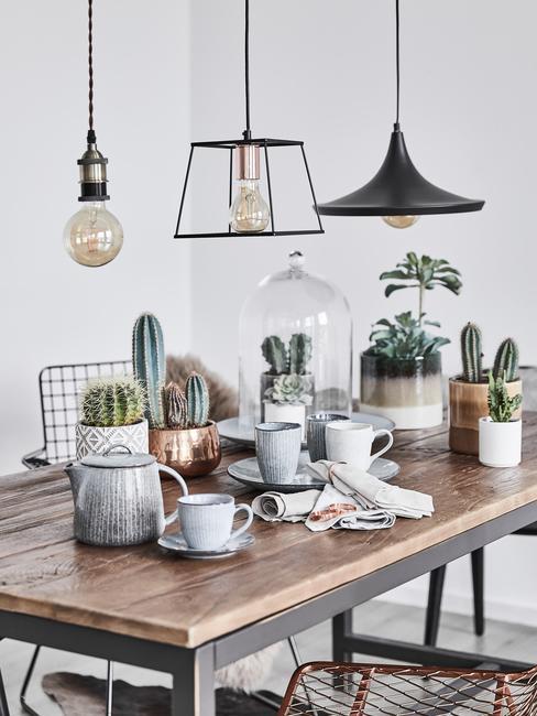 Stół w salonie z kolekcją kaktusów nah którym wiszą czarne lampy