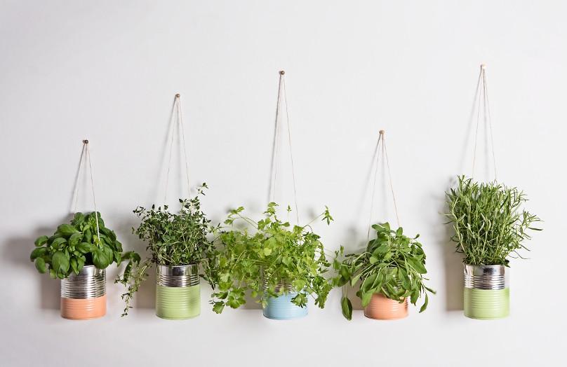 DIY: Bylinková zahrada