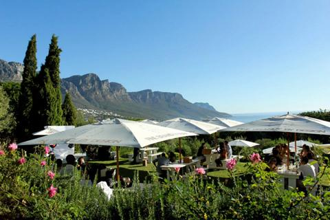 Cape Town for Food-Lovers