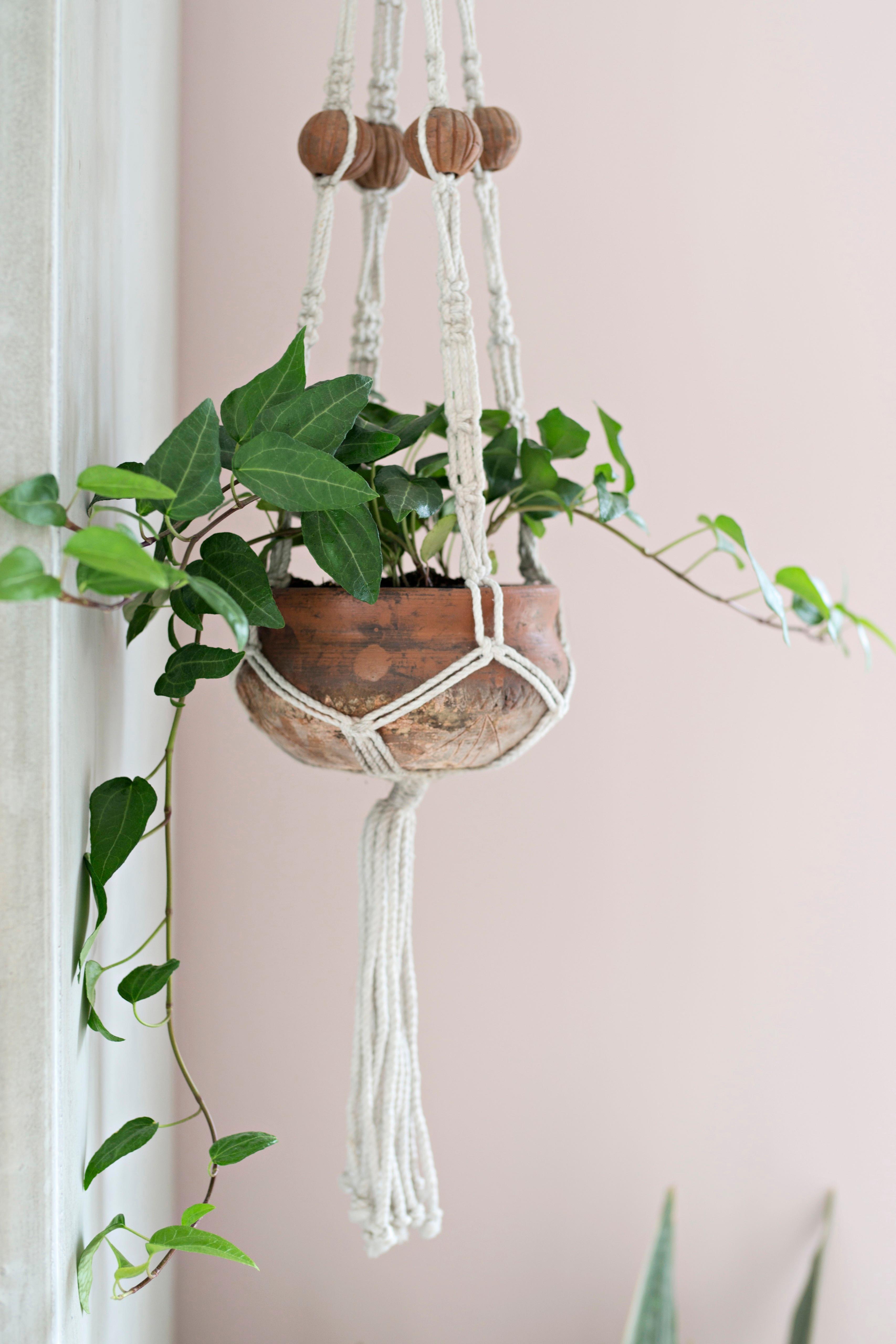 Colgador de macramé para plantas