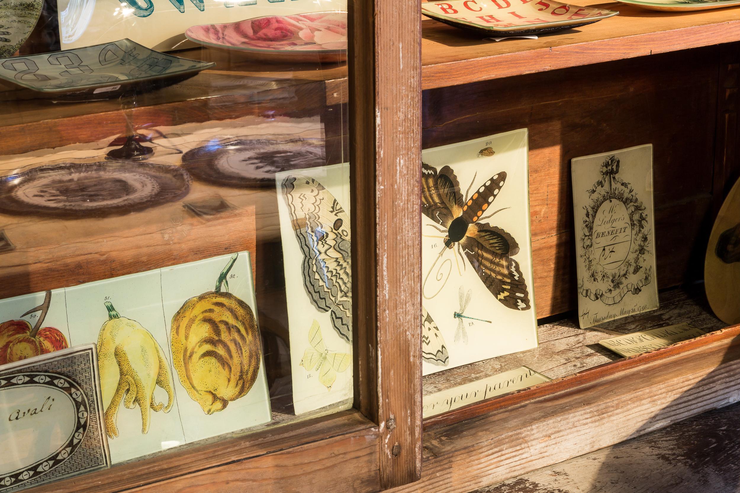 Figure animali e vegetali sono accostate a oggetti di design