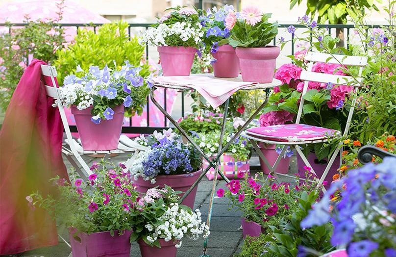 Garden Design - Progettare un angolo verde