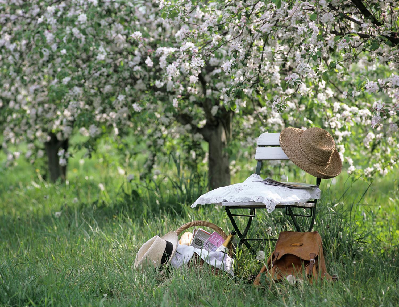 Soluzioni Giardino Delle Parole arredare il giardino i consigli di simonetta chiarugi