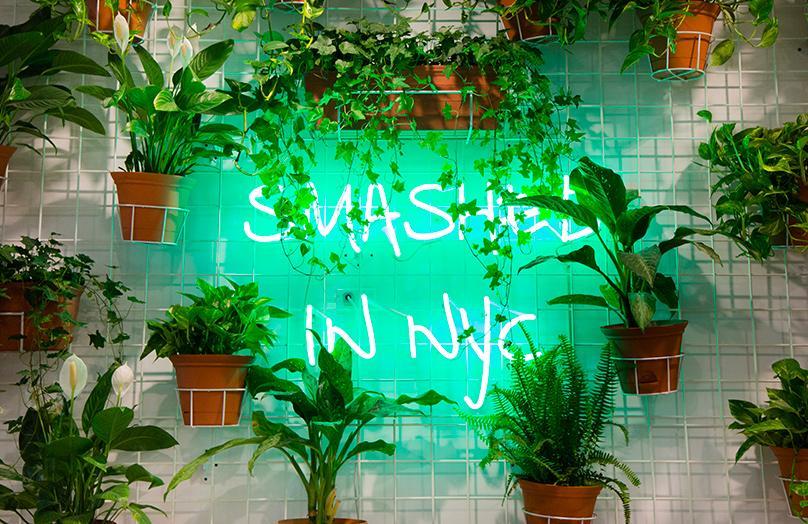Avocaderia - Il locale più Healthy&Tasty è a New York