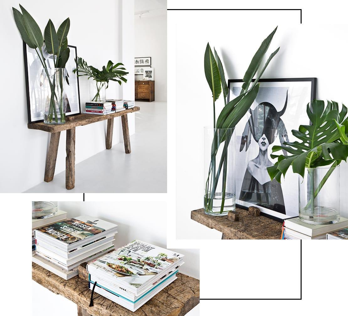 rośliny w industrialnym mieszkaniu