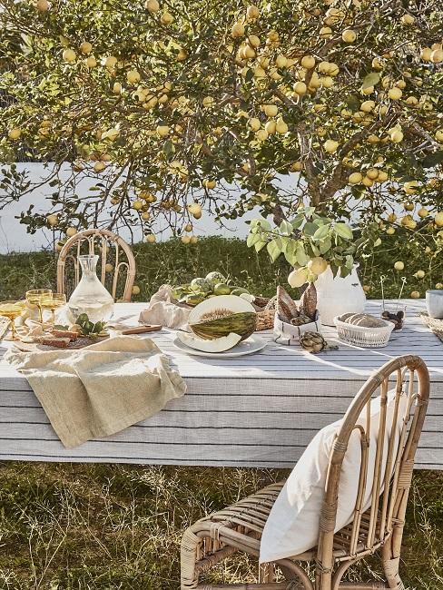 Lange tafel met wit gestreept tafelkleed met houten stoelen onder appelboom
