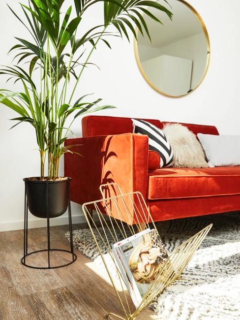 Woonkamer met oranje fluwelen zitbank en palmboom in plantenpot