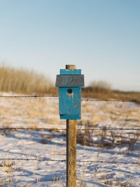 Blauw vogelhuise aan hekwerk in winterse setting